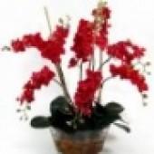 Aquallusion Resin (Flower Resin) (1)